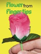 Flower from Fingertips