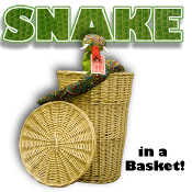 Snake Basket with Remote Control