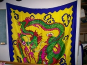 Gently Used Rice Dragon Silk