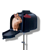 Hare Mail with Remote Control