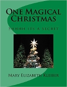 One Magical Christmas Book