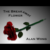 The Breakaway Flower by Alan Wong