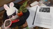 Gently Used Rabbit in Hat Puppet
